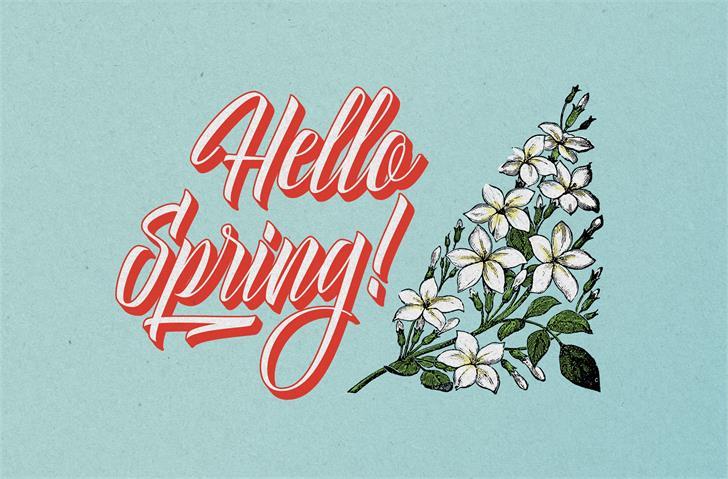 Delphin Spring шрифт скачать бесплатно