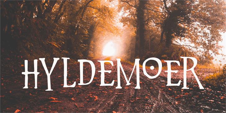 Hyldemoer шрифт скачать бесплатно