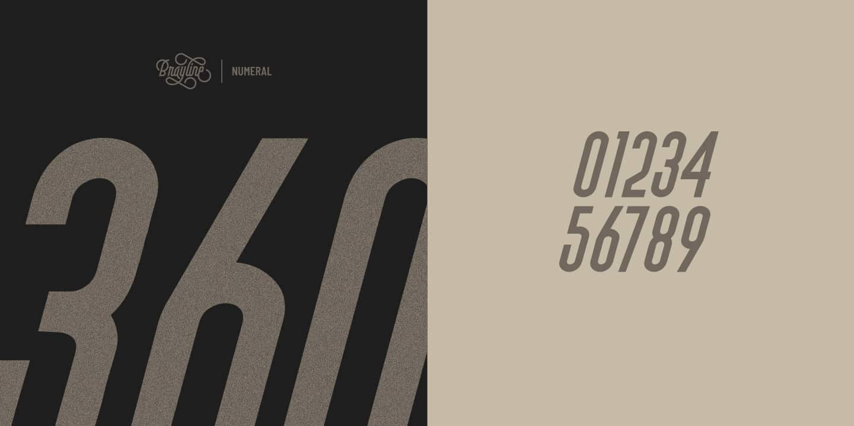 Download Brayline font (typeface)