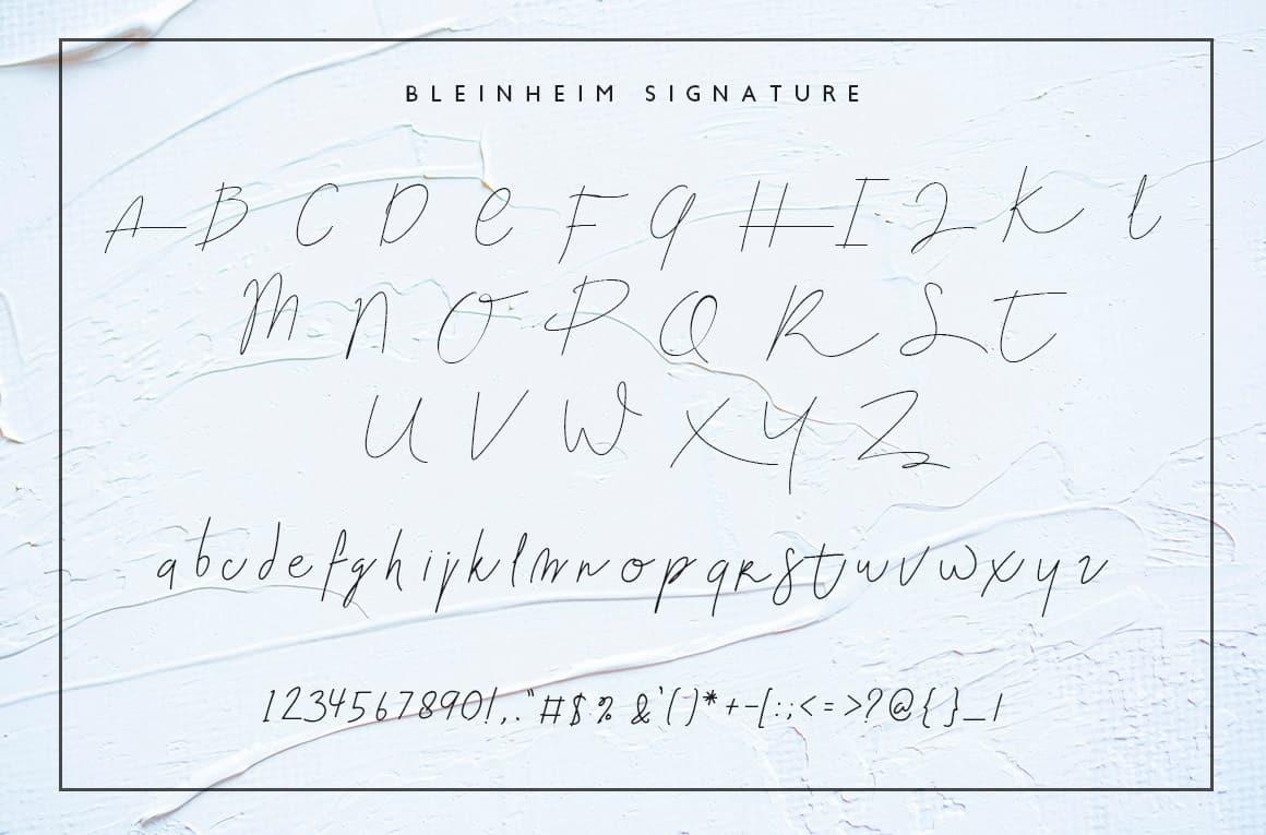 Download Blenheim Signature font (typeface)