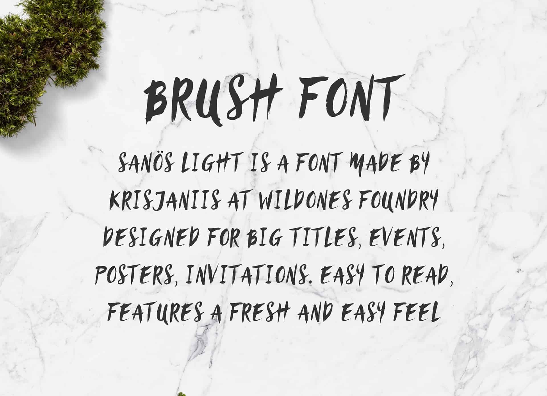 Sanös Brush Light шрифт скачать бесплатно