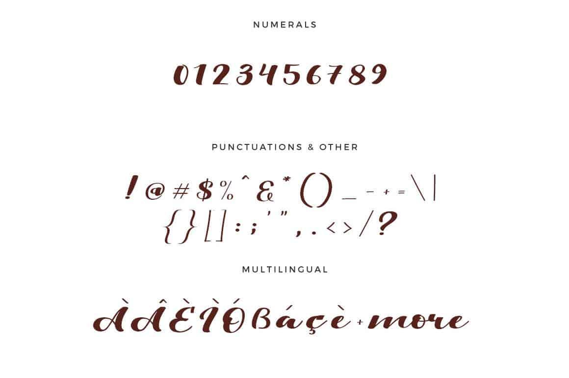 Download Viksi Script font (typeface)