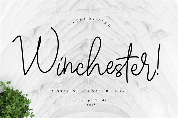 Download Winchester font (typeface)