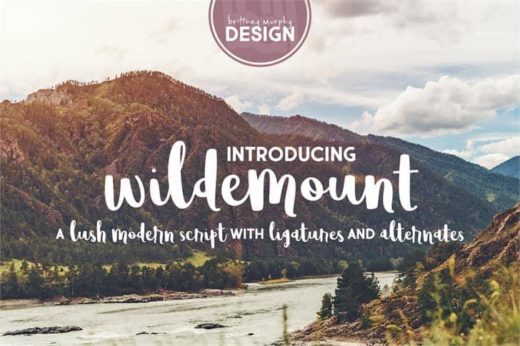 Wildemount шрифт скачать бесплатно