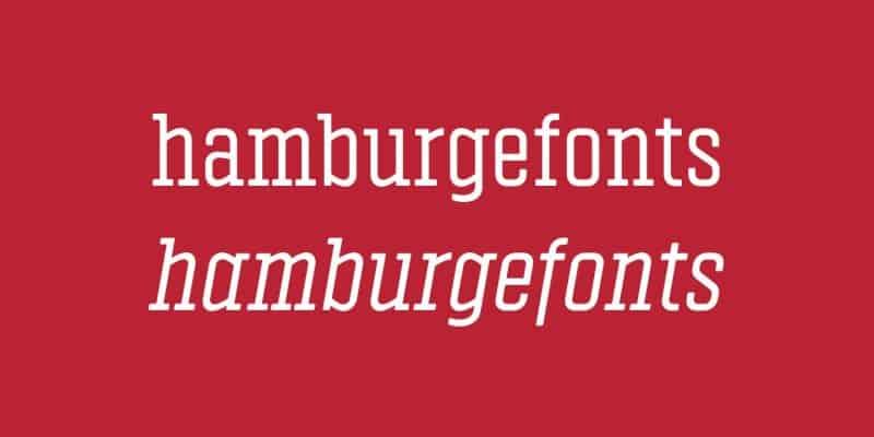 Download Vin Slab Light font (typeface)