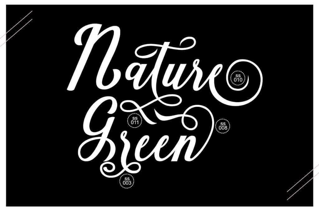 Natural Script шрифт скачать бесплатно