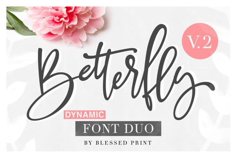 Download Better Fly 2 - Dynamic font (typeface)
