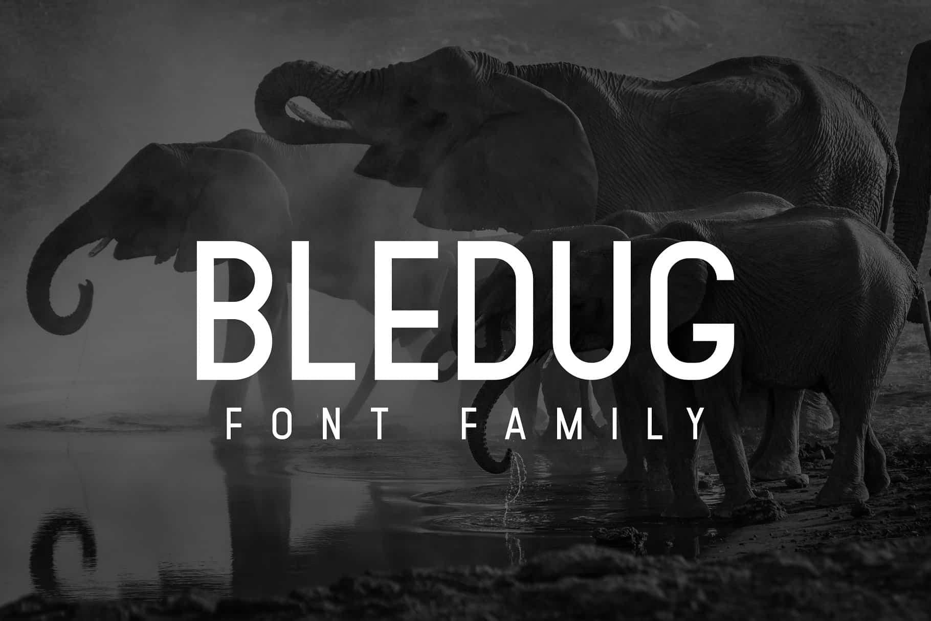 Download Bledug font (typeface)