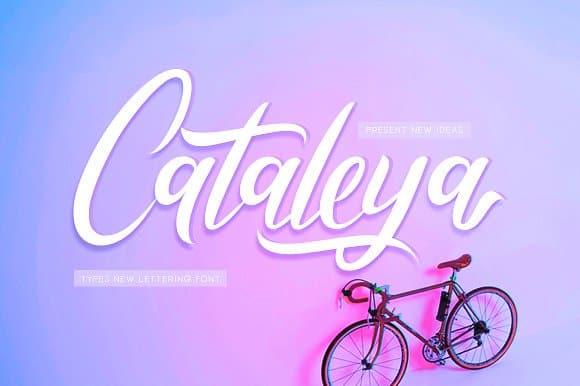Download Cataleya font (typeface)
