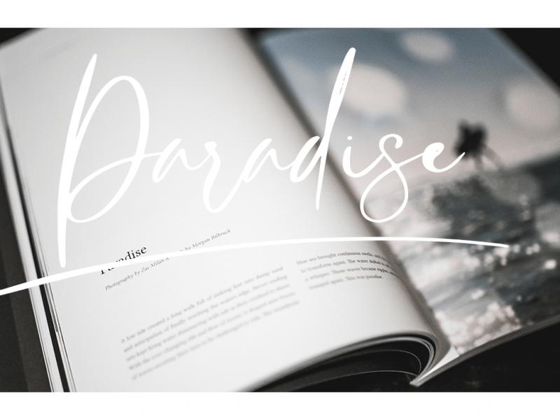 Download Rasty King font (typeface)