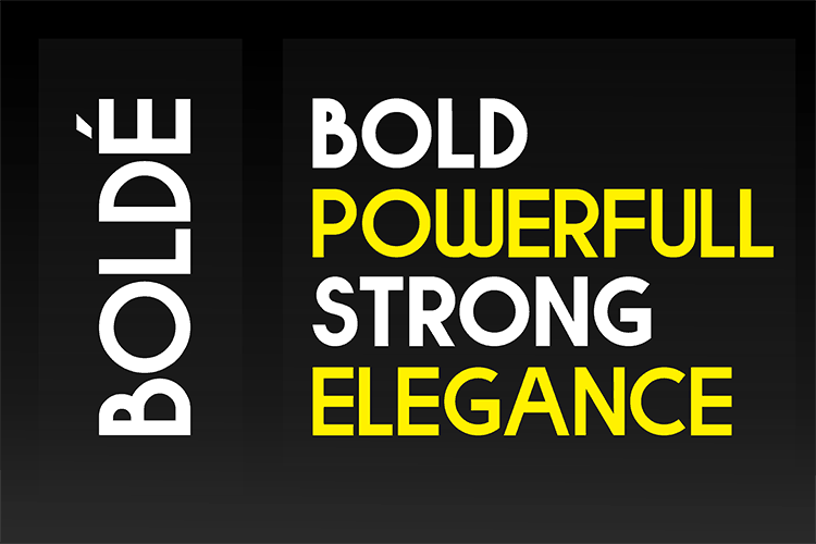 Download Bolde Sans Typeface font (typeface)