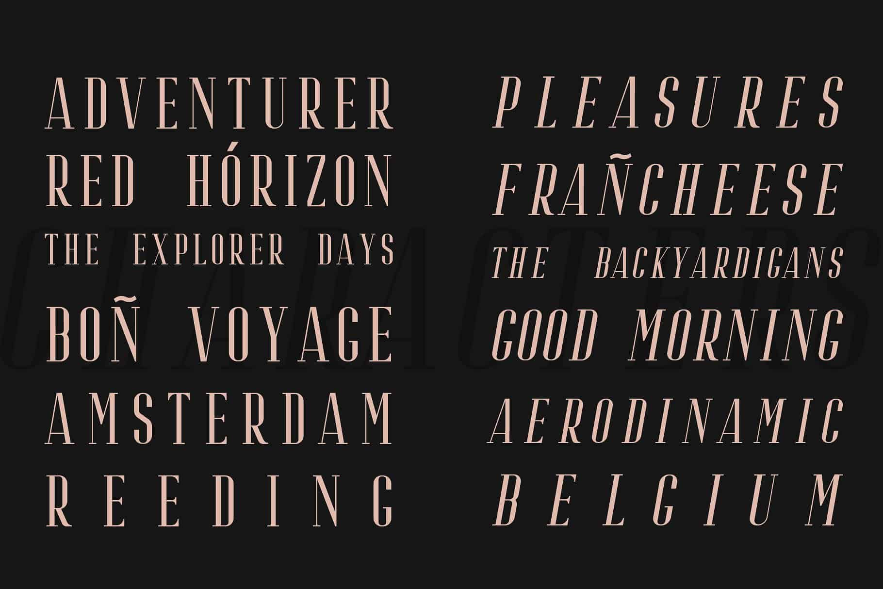 Download Riffle font (typeface)