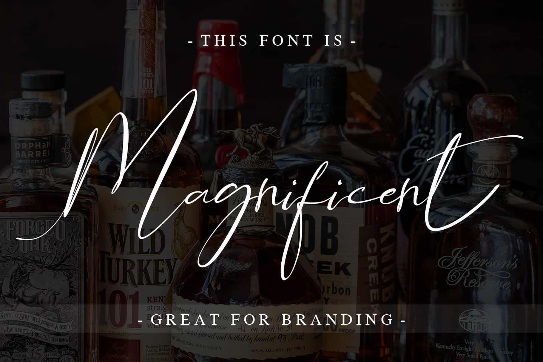 Download Asgard Signature font (typeface)