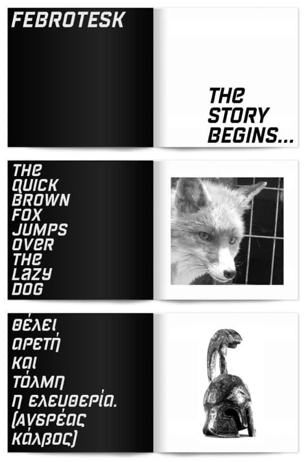 Download Febrotesk font (typeface)