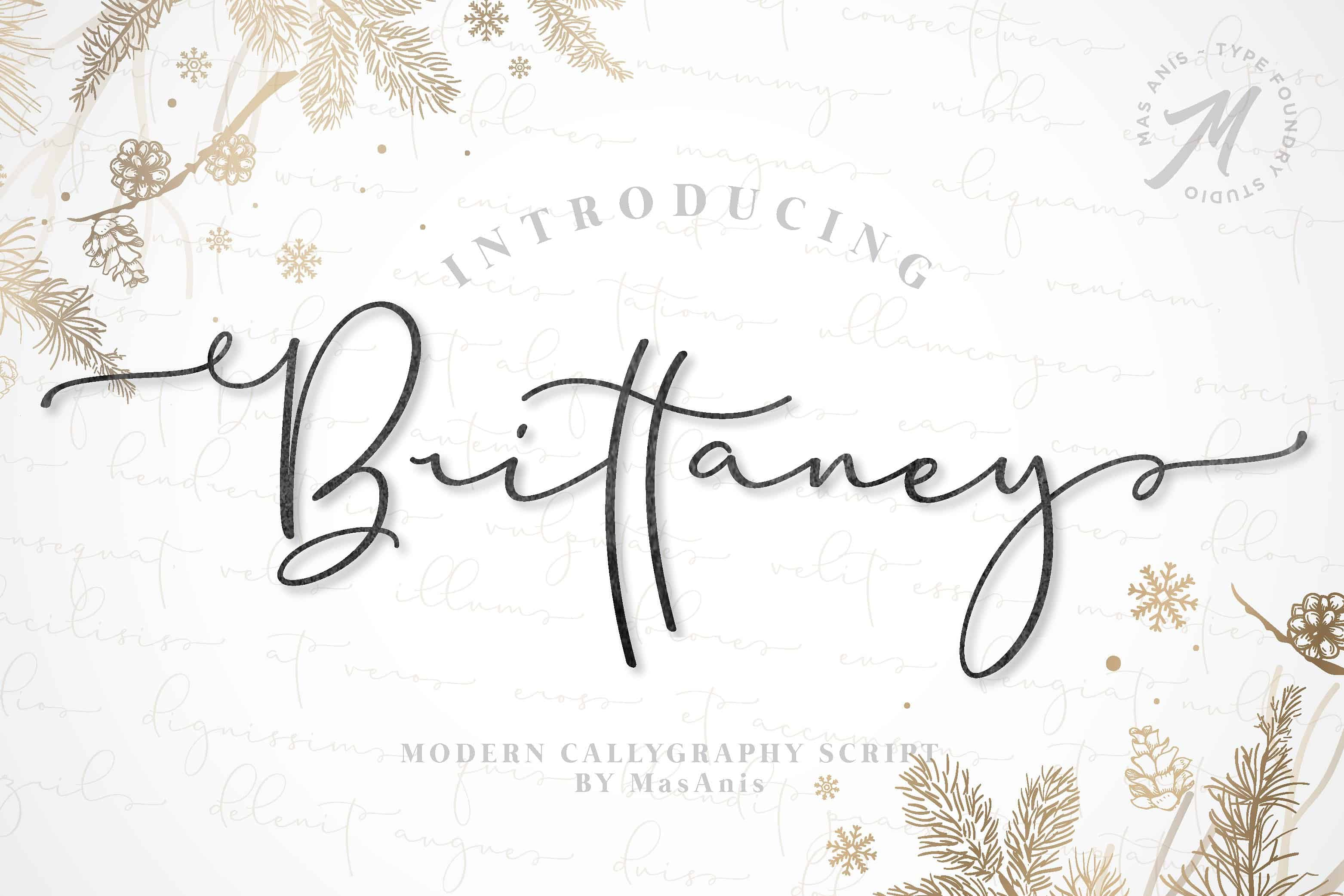 Download Brittaney font (typeface)