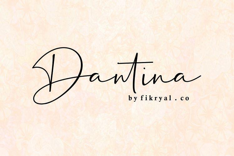 Download Dantina font (typeface)