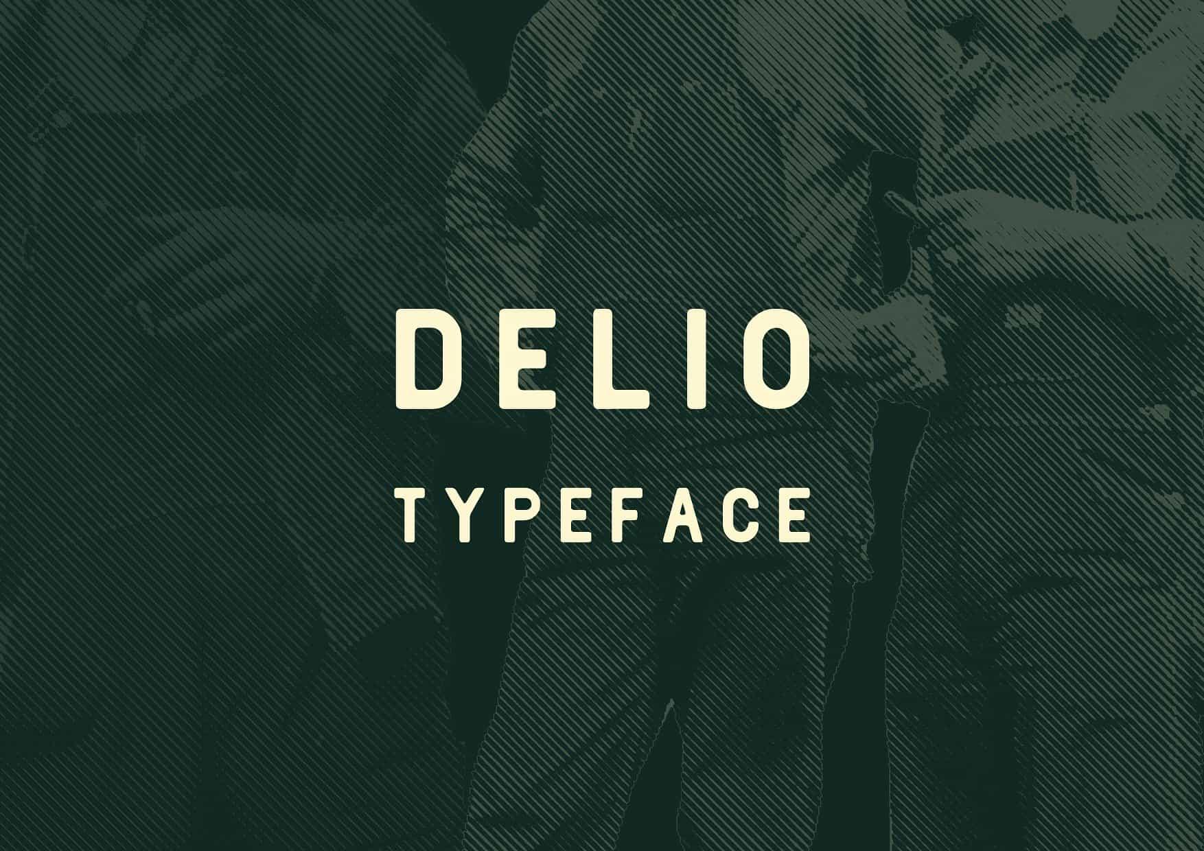Download Delio font (typeface)