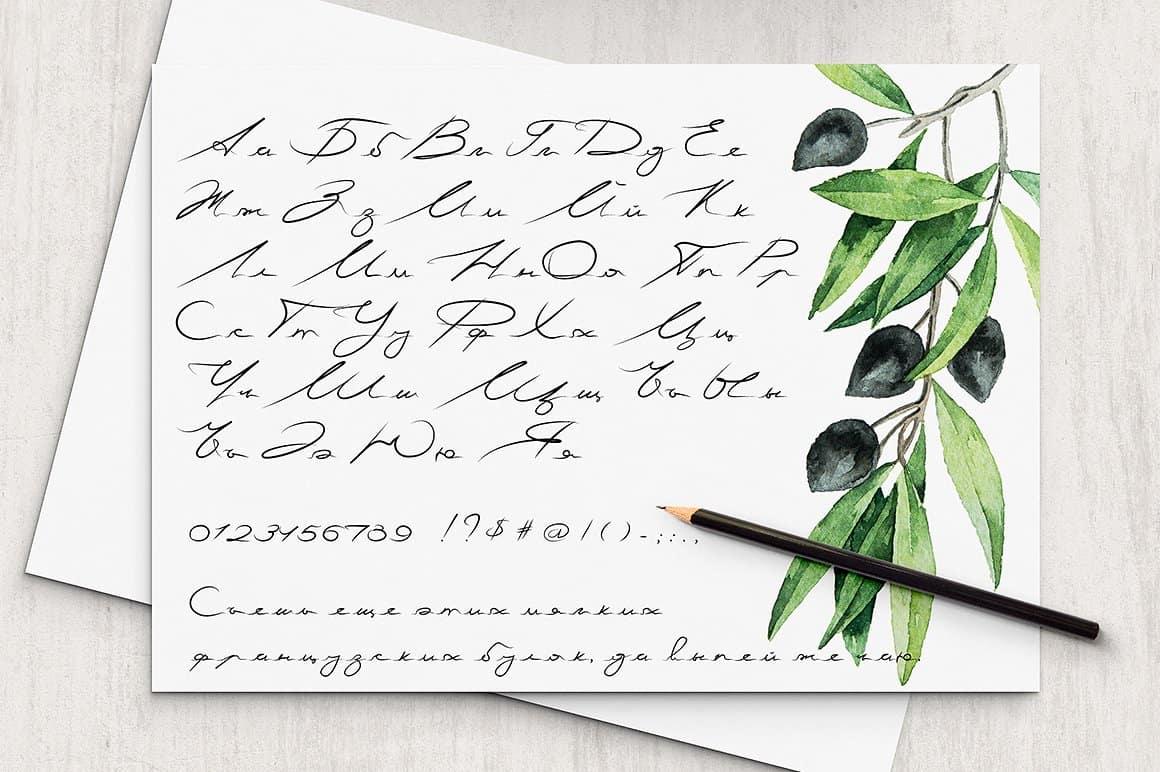 Download Basil Latin & Cyrillic font (typeface)