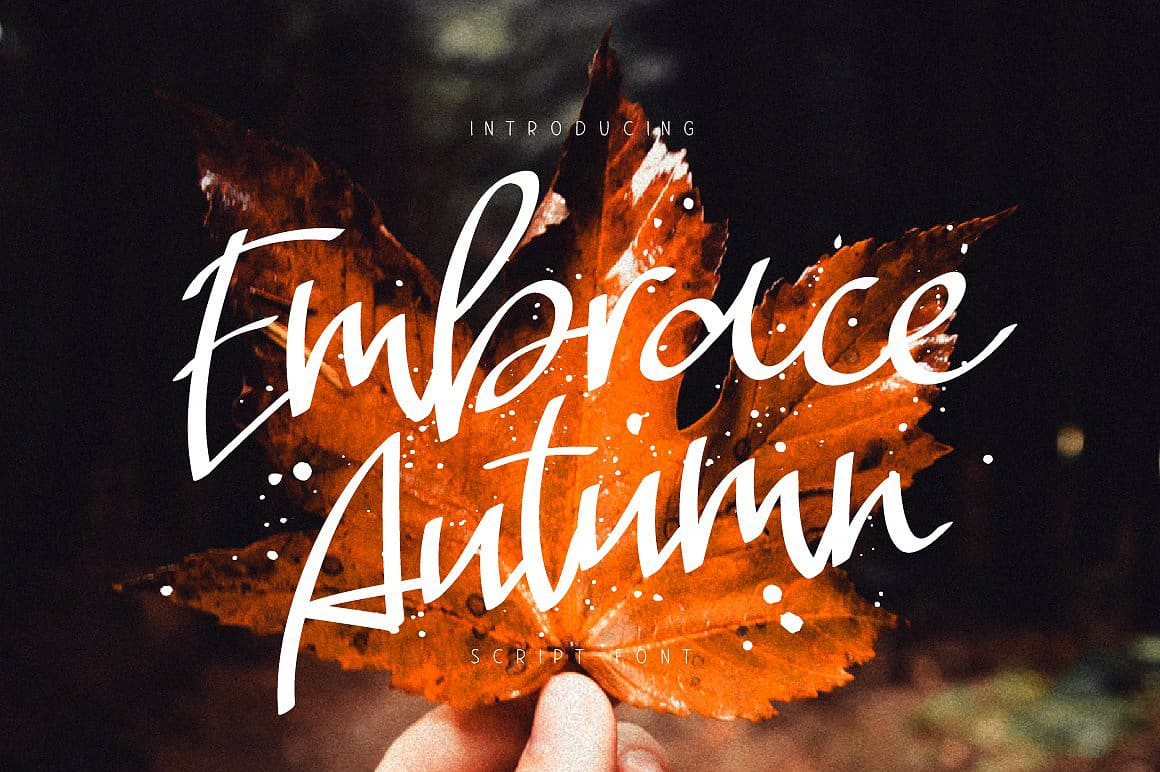 Download Embrace Autumn font (typeface)
