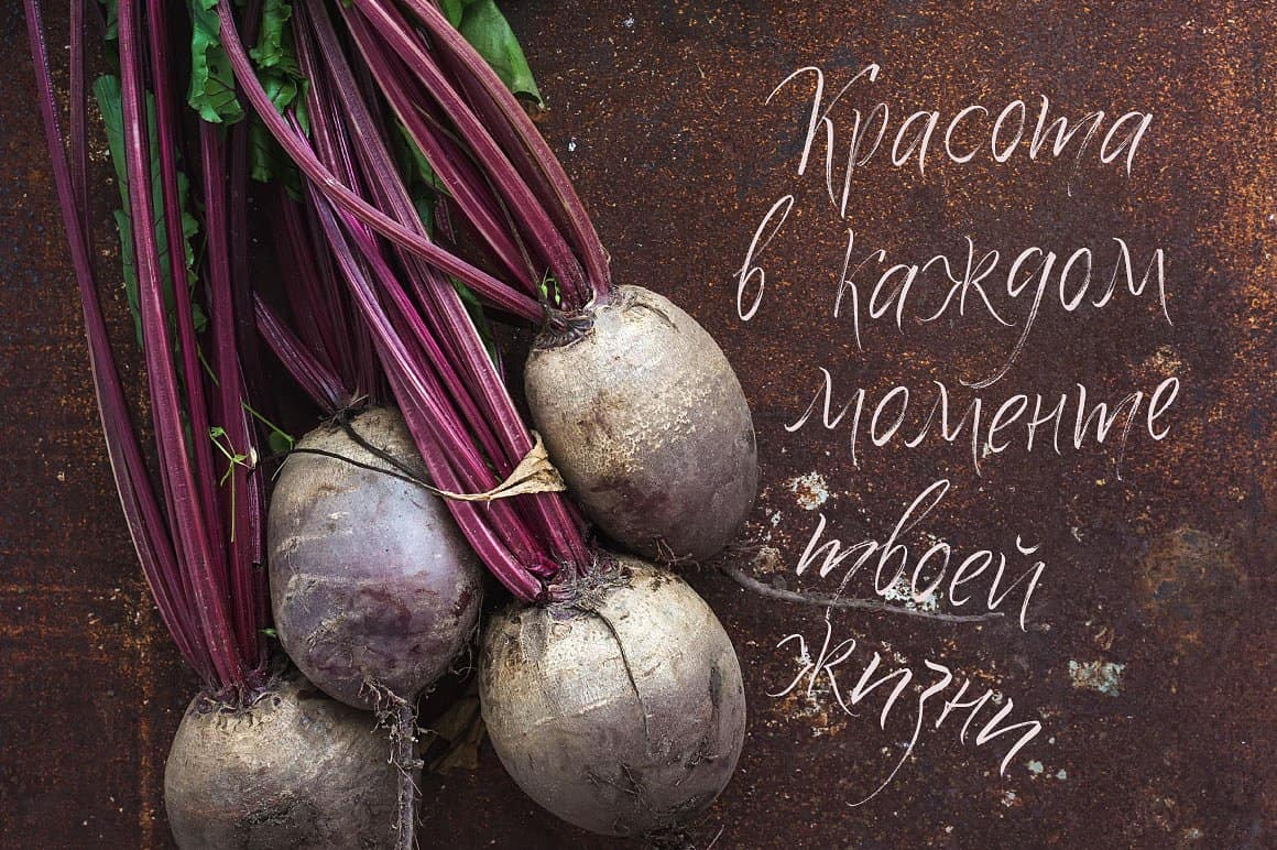 Download Quick Snack Script Latin & Cyrillic font (typeface)