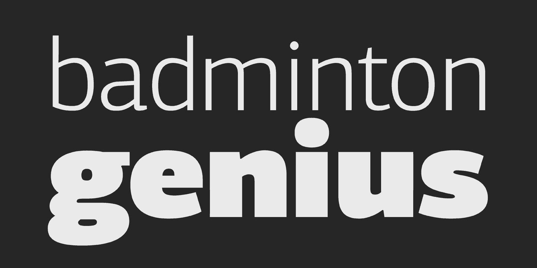 Download PF Centro Sans Pro font (typeface)