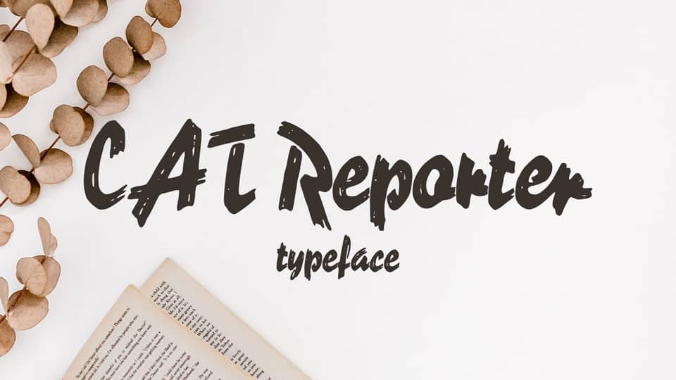 Download Reporter     [1938 - Carlos Winkow] font (typeface)