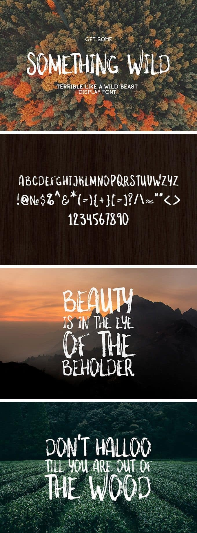 Download Something Wild font (typeface)