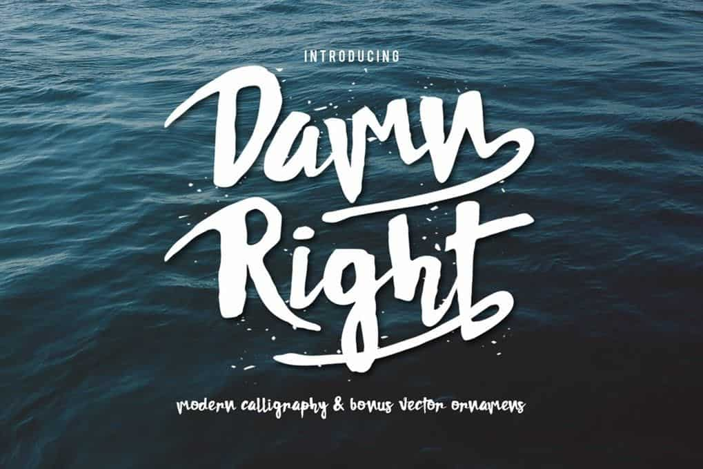 Download DAMNRIGHT font (typeface)