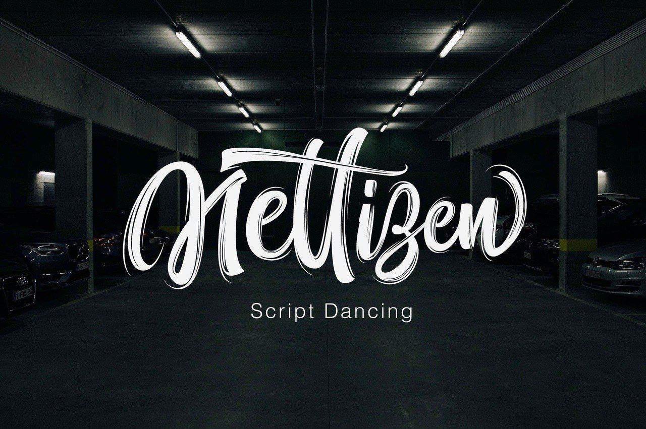 Download Nettizen font (typeface)